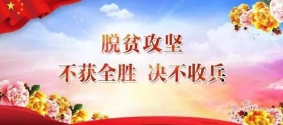 王春:让贫困户都能有一技在手